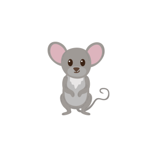 th mouse