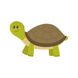th turtle