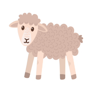 th sheep