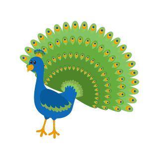 th peacock
